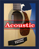 Johnson Instruments Acoustic Guitars
