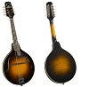 KENTUCKY MASTER MODEL A-MODEL MANDOLIN KM-950