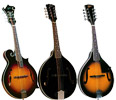 Rover Mandolins