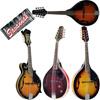 Savannah Mandolins